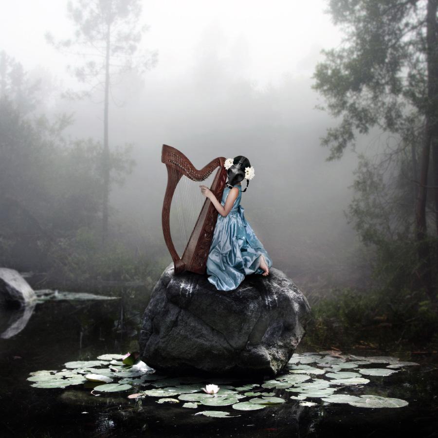 the-harpist