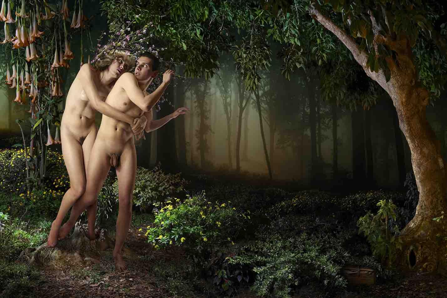 прости меня дерево прощения современное искусство фотография ddiarte