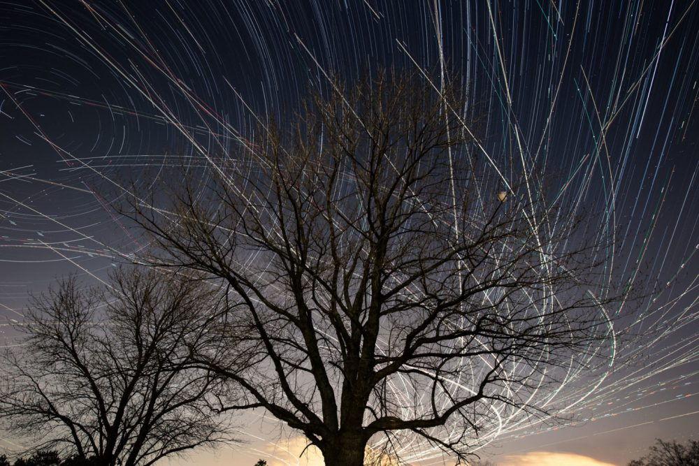 Современный фотограф Пит Мауни. Ночное небо, дерево и огни от самолета